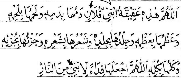 Qurbani and Aqueeqa Talimul-Haq Part 13